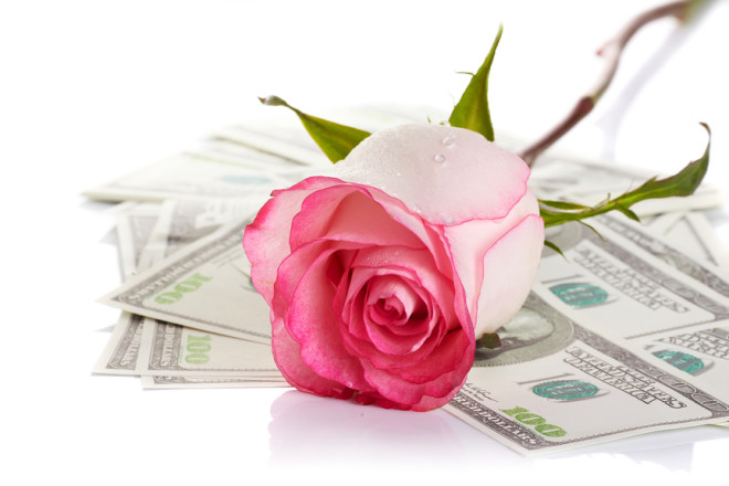 Pink rose. Pink flower. Rose and dollars. Dollars. Flowers and money. Expensive flower. Expensive gift.